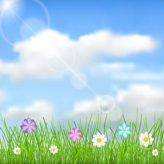Naturalne tło z niebieskim niebem, słońcem, chmurami, zieloną trawą i wielokolorowymi kwiatami
