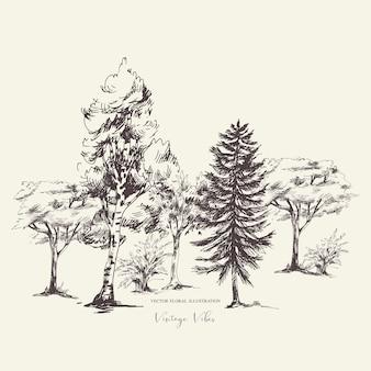 Naturalny zestaw zielonych drzew, kolekcja vintage