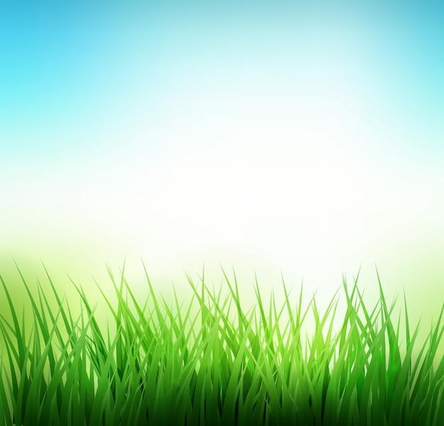 Naturalny zielonej trawy tło