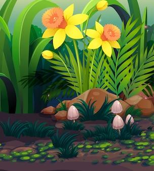 Natury scena z żółtym daffodil kwitnie w ogródzie