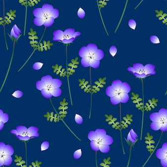 Nemophila baby blue eyes flower