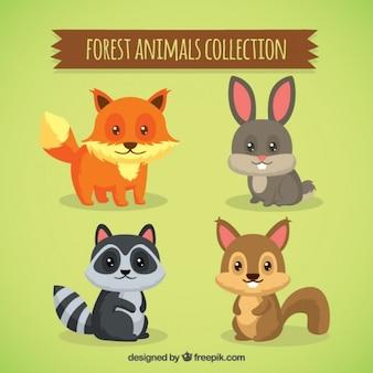 Nicea zwierząt leśnych z pięknymi oczami