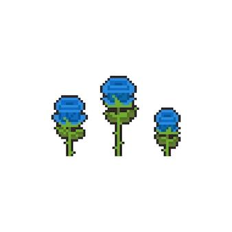 Niebieska róża zestaw ikon pikseli sztuki.