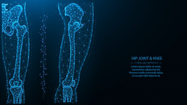 Niebieska wielokątna ilustracja stawu biodrowego i kolanowego, widok z przodu iz boku