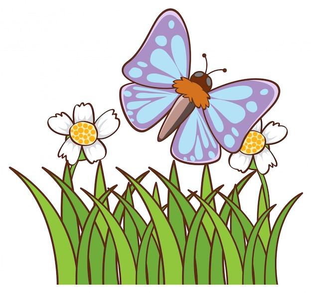 Niebieski motyl