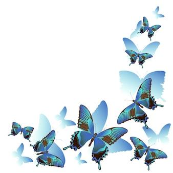 Niebieskie motyle i sylwetki na białym tle