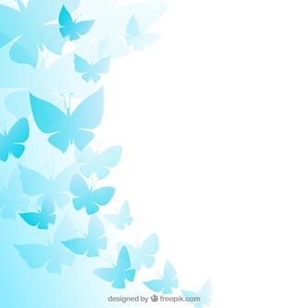 Niebieskie motyle w tle