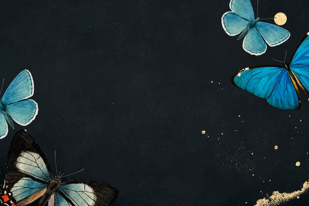 Niebieskie motyle wzorzyste na czarnym tle wektora