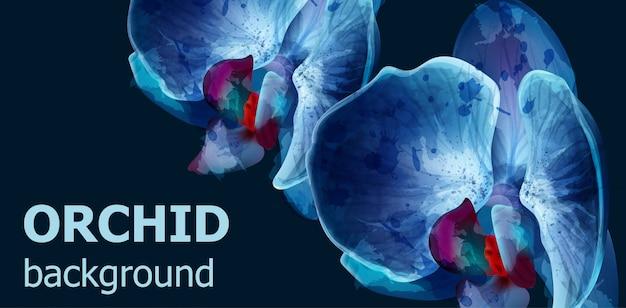 Niebieskie tło akwarela orchidei