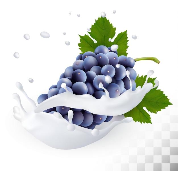 Niebieskie winogrona w plusk mleka na przezroczystym tle