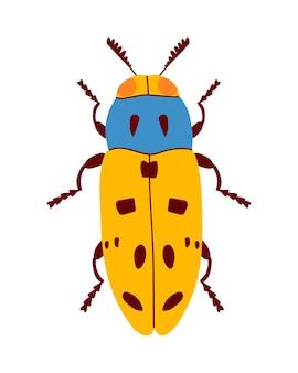 Niebiesko-żółty chrząszcz płaski. na białym tle .