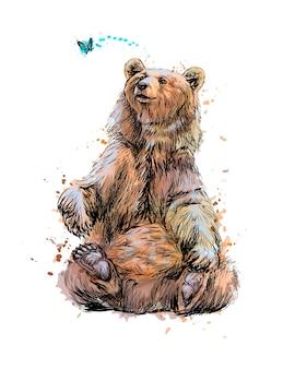 Niedźwiedź brunatny siedzi i bawi się motylem z odrobiną akwareli, ręcznie rysowane szkic. ilustracja farb