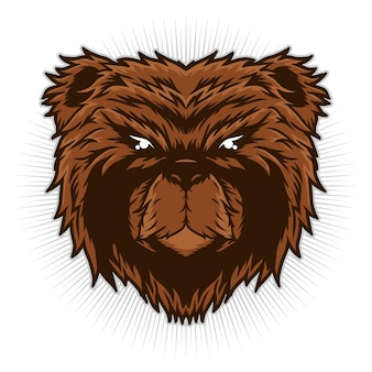 Niedźwiedź głowa ilustracja szczegółowe wektor koncepcja projektu