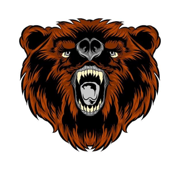Niedźwiedź głowy na białym tle