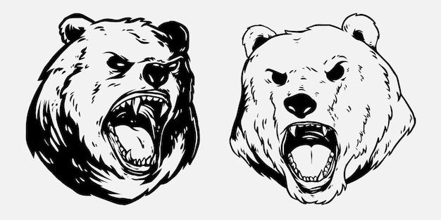 Niedźwiedź i głowa białego niedźwiedzia