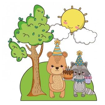 Niedźwiedź i szop z okazji urodzin