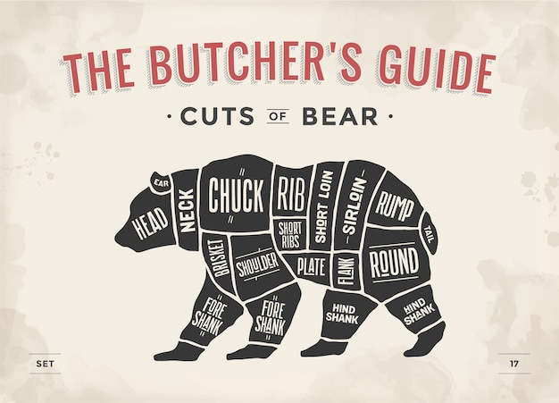Niedźwiedź kawałek mięsa plakat schemat rzeźnika