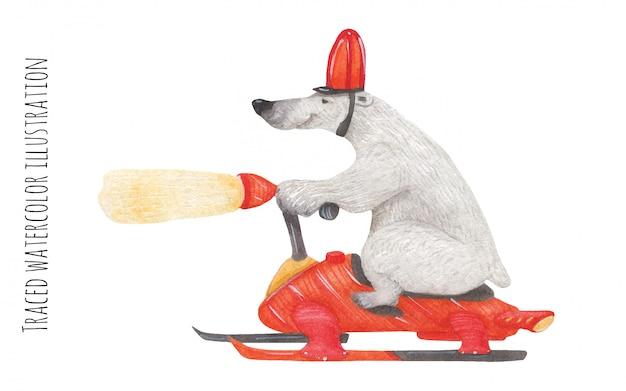 Niedźwiedź polarny na czerwonym rowerze śnieżnym