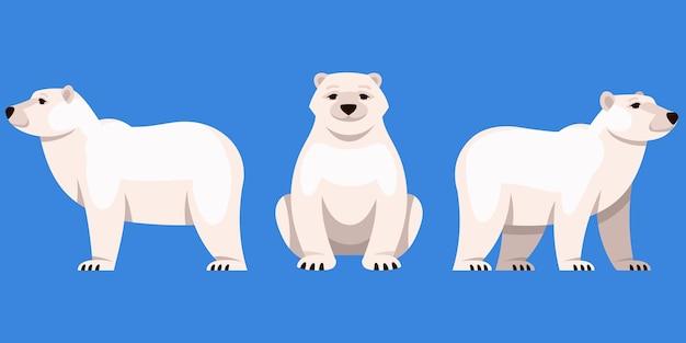 Niedźwiedź polarny pod różnymi kątami. arktyczne zwierzę w stylu cartoon.