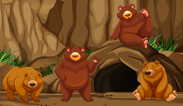 Niedźwiedź w mountain cave