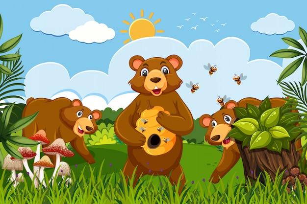 Niedźwiedzie miodne w scenie dżungli