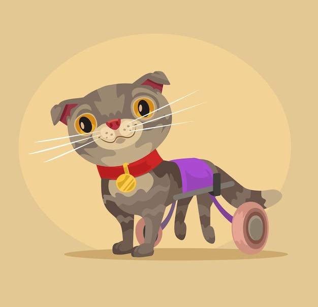 Niepełnosprawny kot na wózku inwalidzkim.