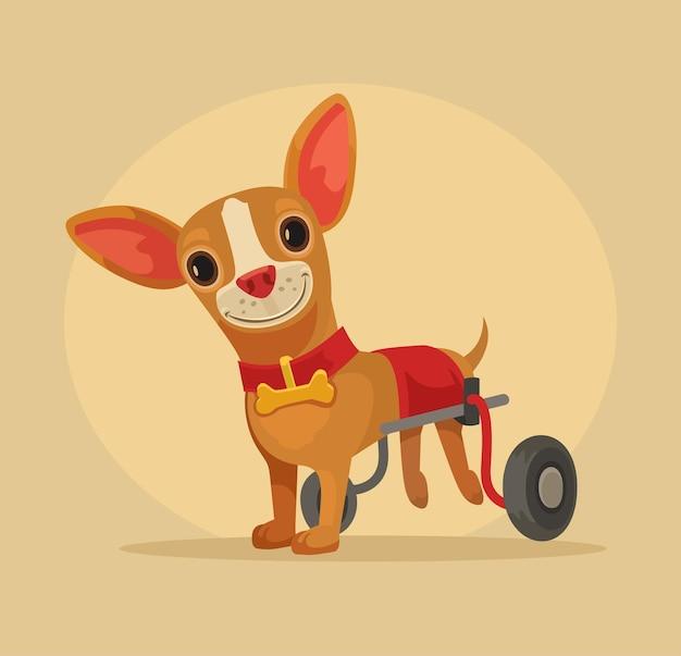 Niepełnosprawny pies na wózku inwalidzkim.