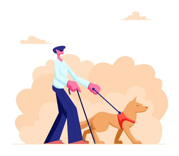 Niewidomy spacerujący z psem przewodnikiem i laską wzdłuż ulicy. specjalnie wyszkolone zwierzę pomagające niepełnosprawnym mężczyznom chodzić po mieście