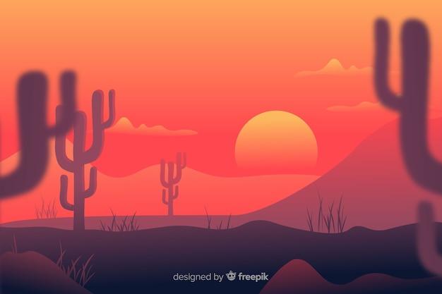 Niewyraźne gałęzie kaktusów i zachodu słońca