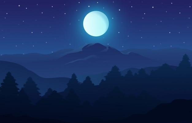 Nighttime natura krajobraz w lesie