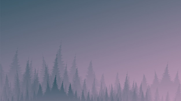 Noc mglisty i mgła pine forest, krajobraz w tle