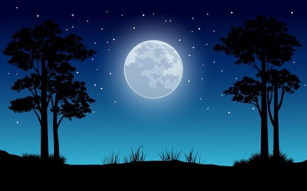 Nocna sceneria z pełni księżyca i gwiazdami