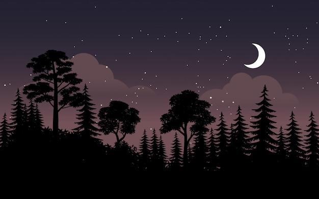 Nocny krajobraz w lesie