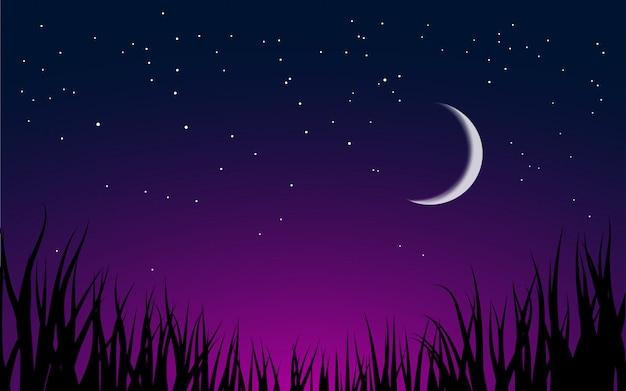 Nocny krajobraz z półksiężycem i trawą