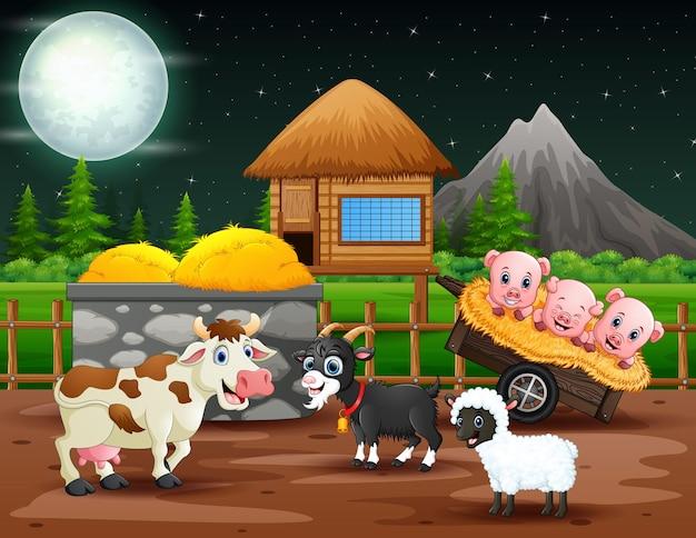 Nocny krajobraz ze zwierzętami na ilustracji pól uprawnych