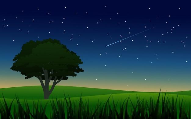 Nocy sceneria na łące z gwiaździstym niebem