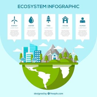 Nowoczesna infografika ekosystemu z Płaska konstrukcja