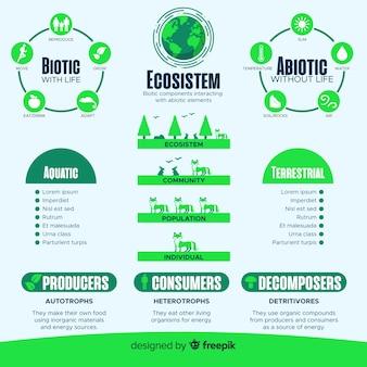 Nowoczesna koncepcja infografiki ekosystemu