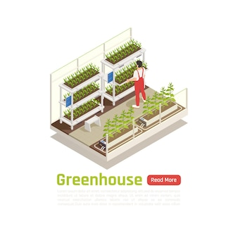 Nowoczesny hydroponiczny system ogrodniczy roślin dba o skład izometryczny ze sprawdzaniem temperatury wody trzymającej szkodniki z dala od banerów
