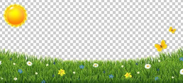 Obramowanie zielonej trawy z kwiatami i słońcem na przezroczystym tle z siatką gradientu,
