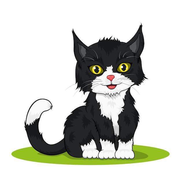 Obraz małego, czarno-biały kolorowy ładny kotek na białym tle
