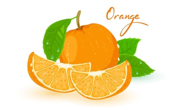 Obraz przedstawia dojrzałą pomarańczę z zielonymi liśćmi i plastrami na pierwszym planie ilustracji na białym tle
