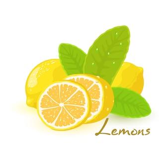Obraz przedstawia piękne duże żółte cytryny i pokrojony plasterek z zielonymi liśćmi ilustracja kreskówka