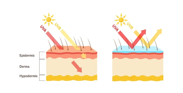 Ochrona przed promieniowaniem uv. balsam przeciwsłoneczny chroni ludzką skórę przed promieniowaniem uva, uvb