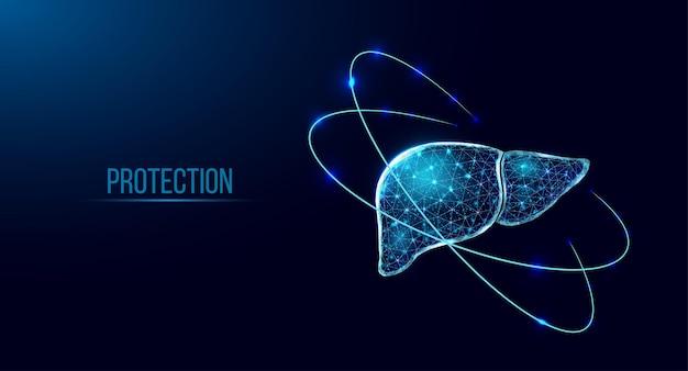 Ochrona wątroby człowieka. model szkieletowy w stylu low poly. streszczenie nowoczesne 3d wektor ilustracja na ciemnym niebieskim tle.