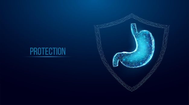 Ochrona żołądka człowieka. model szkieletowy w stylu low poly. koncepcja leczenia medycznego, farmakologicznego układu pokarmowego. streszczenie nowoczesne 3d wektor ilustracja na ciemnym niebieskim tle.