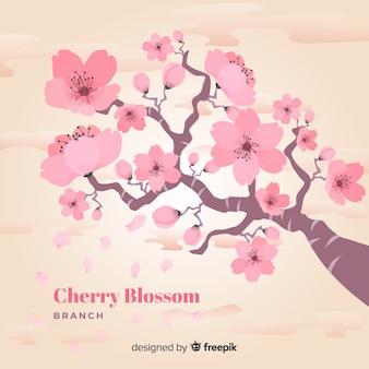 Oddział kwiat wiśni