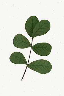 Oddział z elementem projektu zielonych liści