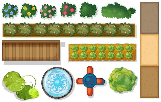 Odgórny widok rośliny i staw w ogródzie