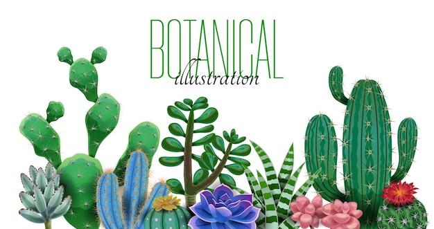 Odmiana kaktusów z edytowalnym tekstem na białym tle ilustracji